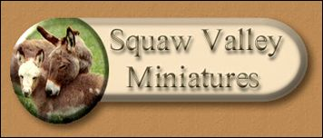 Squaw Valley Miniatures